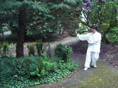 ba gua circle walking nei gong the meridian opening palms of ba gua zhang