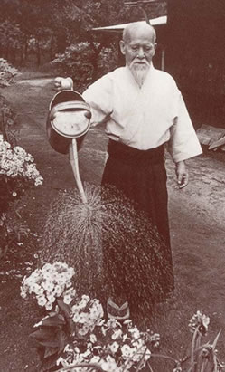 Aikido Founder Morihei Ueshiba watering his garden.