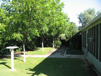 Our Back Shaded Garden - July 2006