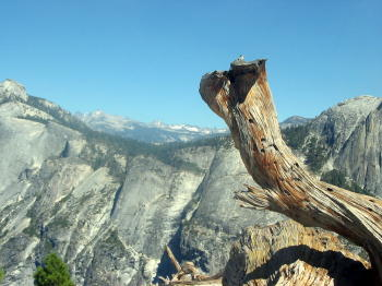 North Dome Hike, Yosemite
